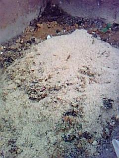生ゴミの堆肥化、一回で約90キログラム