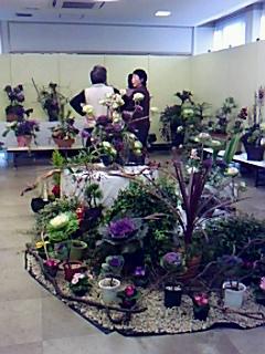 フラワーフレンドリーの見事な葉牡丹展