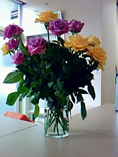 うるしの里いきいき協議会にバラの花