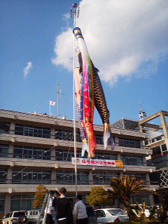 こいのぼり泳ぐ鯖江市役所